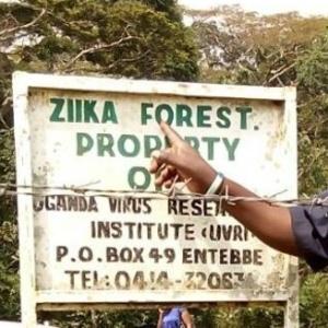 30jan-2016---a-floresta-zika-nao-e-tao-conhecida-em-uganda-na-verdade-a-maioria-das-pessoas-nem-sequer-sabe-exatamente-onde-ela-fica-1454146913520_300x300