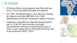 dinmica-das-epidemias-de-zika-vrus-no-mundo-14jun2015-2-638