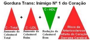 gordura-trans (1)