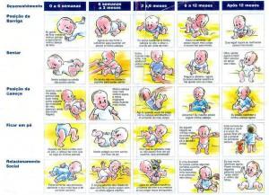 Fases de desenvolvimento do bebe