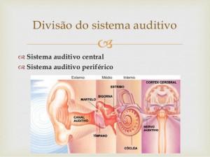 aula-2-sitema-auditivo-perifrico-oe-e-om-3-638