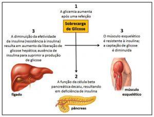 sindrome-metabolica-e-exercicio-fisico-03